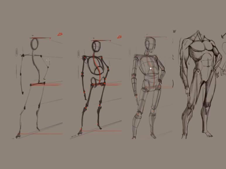 人体结构造型班