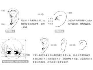 【图文教程】耳朵的画法