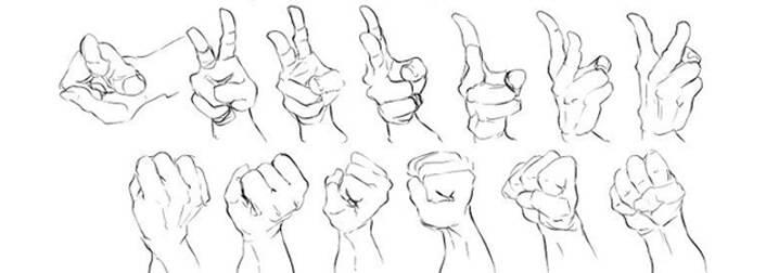 上百种手、手臂及手部动作绘图